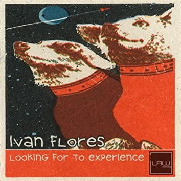 Looking For To Experience
