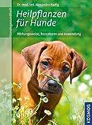 Alexandra Nadig: Heilpflanzen für Hunde