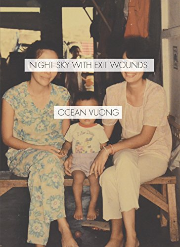 Cover of Night Sky with Exit Wounds