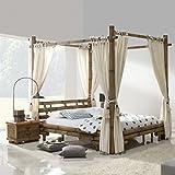 Möbel Bressmer Himmelbett Bambusbett Tabanan HonigAntik 200x200 Bambusmöbel Bett aus Bambus Designerbett
