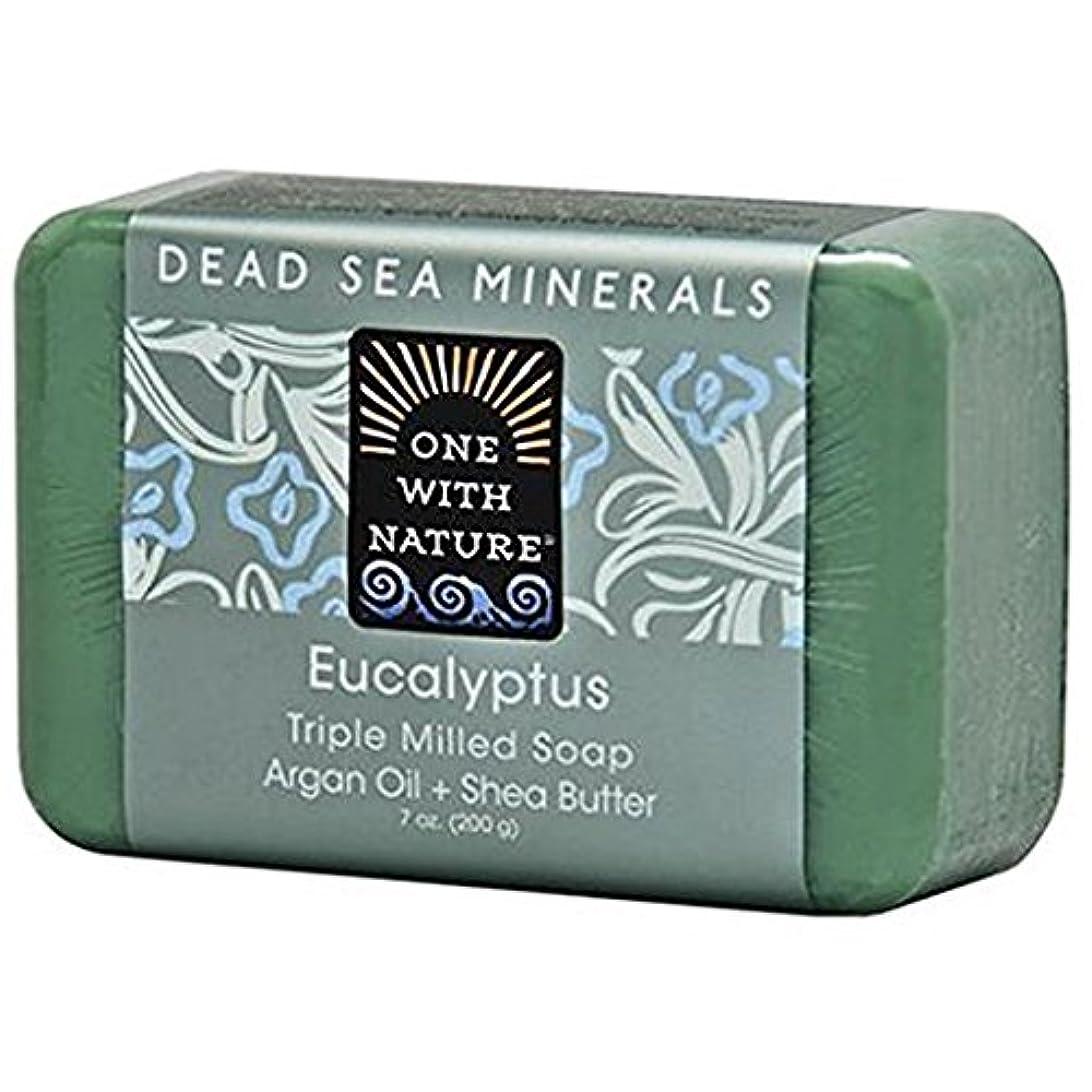 隙間一貫性のない液体One With Nature - 死んだSea Mineralsは製粉された棒石鹸のユーカリを三倍にする - 7ポンド [並行輸入品]