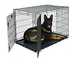 Midwest Life Stages Double-Door Folding Metal Dog Crate