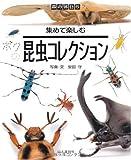 昆虫コレクション―集めて楽しむ (森の休日)