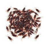 insectos parecidos a las cucarachas