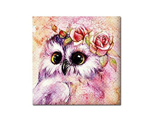 DIY Diamond Owl Painting and Flower New Cartoon Colorful Kitten 5D Rubik Cube Diamond Embroidery 50x60cm