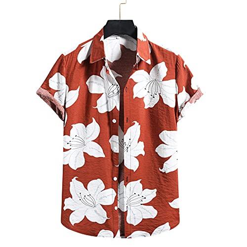Zytyeu T-Shirt Uomo Estiva Abbottonatura Stampata Shirt Uomo Maniche Corte Basic Colletto Kent Uomo Camicia Moderna Confortevole Ampia Hawaii Uomo Camicia da Spiaggia C-Multicolor 3 L