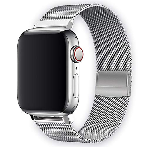 WAAILU Compatible with Apple Watch Band 38mm 40mm 42mm 44mm, Bicolor Stainless Steel Mesh Sport Wristband Loop Compatible for iWatch Series 5/4/3/2/1