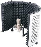 Soundlab Studio Microphone Reflexion Screen G154B