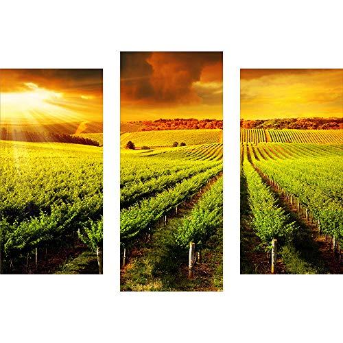 decorwelt | Dreiteiliges Wandbild 3 Teilig Acrylglasbilder Acryl Glasbild Landschaft Orange 90x70 cm Wandbilder Wohnzimmer Esszimmer Deko Wanddeko