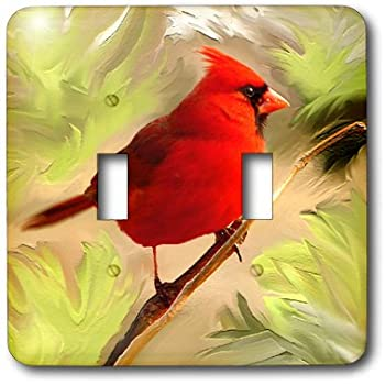 3dRose lsp/_50941/_1 State Bird Of Ohio Red Cardinal Toggle switch