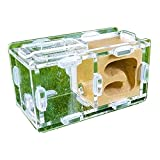 Mini Ant House Ant Nest Ant Farm Acrylic Plaster, Suitable For Young Queen