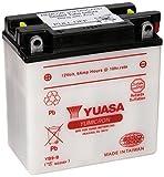 Yuasa YUAM229BY YB9-B Battery, Multi-Colored