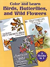 Color and Learn Birds, Butterflies, and Wild Flowers