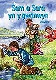 Cyfres Hwyl Drwy'r Flwyddyn: Sam a Sara yn y gwanwyn (Llyfr Mawr)