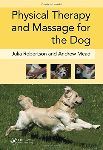 Image OfPhysical Therapy And Massage For The Dog