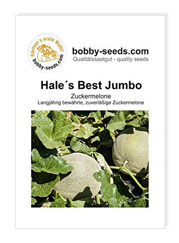 Hales Best Jumbo Zuckermelone von Bobby-Seeds Portion