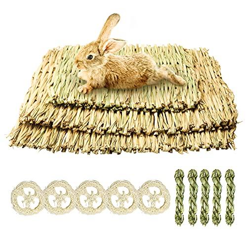 3 alfombrillas de césped naturales para animales pequeños, conejos, hierba seguras y comestibles, 10 piezas juguete masticar cobayas, hámsters, hurones