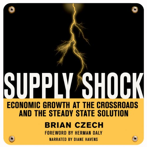 Supply Shock audiobook cover art