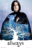 HARRY POTTER Snape - Always Poster Mehrfarbig