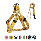 QQPETS Dog Harness Leash Set, Adjustable Heavy Duty No Pull Halter Harnesses for Puppy Extra Small Dogs, Back Clip, Anti-Twist, Perfect for Walking (XS(12'-18' Chest Girth), Yellow Bee)