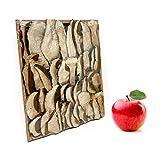 Scherini Valtellina - setas Porcini secos 1ST Quality - Caja de regalo - Caja de madera (100 g)