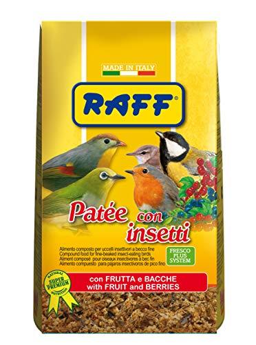 RAFF Pate  con Insetti 400 GR con Frutta E Bacche per Uccelli INSETTIVORI A Becco FINE