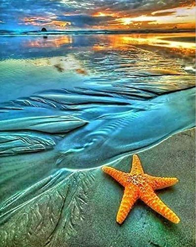 Starfish Diamond Painting by Numbers - MaiYiYi 5D Full Round Diamond Painting Arts Crafts Sea Beach Starfish Diamond Painting Dots Kit Wall Decor Gift for Adult Kid (30 x 40 cm)