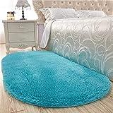 ZMIN Oval Shaggy Bettvorleger, Super Weicher Fluffy Teppiche Anti-Skid Plüsch Teppich Schlafzimmer Wohnzimmer Sofa Tatami Tür-bodenmatte -blau 80x200cm(31x79inch)