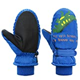 Kids Winter Gloves Toddler Mittens for Ski Boys Snow Girls Waterproof Warm Fleece Royal Blue2-5 Years