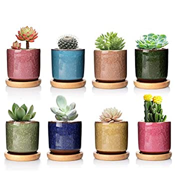 DeeCoo 8 Pack 2.5 inch Ceramic Ice Crack Succulent Plant Pot with Bamboo Tray,Mini Pots for Plants Cactus Plant Pot Flower Pot Container Planter for Home Garden Office Decoration Plants NOT Included