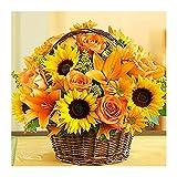 FMLKBZ Pintar por Numeros para Adultos Kit de Pintura al óleo con números para Manualidades para Adultos Principiantes Canasta de Flores Girasol - sin Marco 40 x 50 cm