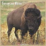 European Bison 2021 Wall Calendar: Official European Bison Calendar 2021, 18 Months