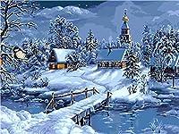キャンバス上の数字に応じた大人のペイントカラー用の数字キットによるDIY油絵ペイント16x20インチ-ブラシ装飾付きの描画(フレームなし) 雪の夜