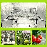 "Megaluxx 1-PK Flexible Elastic Trellis Netting Grow Net - Grow Netting for 4x4 5x5 4x2 Grow Tents (Single 4"" Mesh Net)"