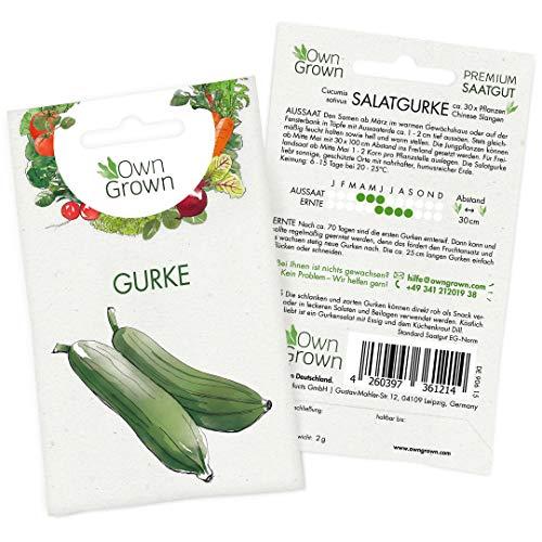 OwnGrown Premium Salat Gurken Samen (Cucumis sativus), Salatgurke Samen zum Anbauen, Sorte Chinese Slangen, Gurken Saatgut für rund 20 Gurken Pflanzen