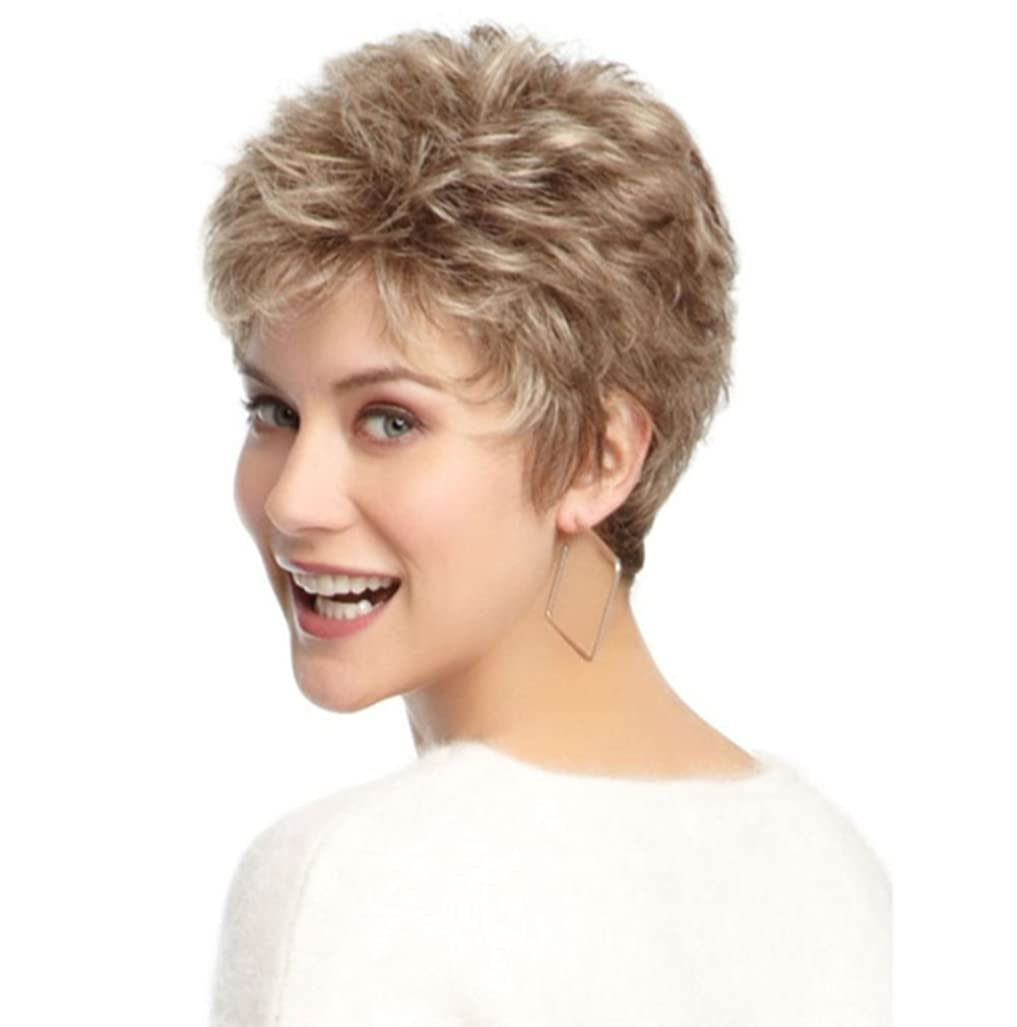 慎重寄り添うアナログウィッグヒートセーフ合成ヘアデセレントパーティー女性のヘアピースコスプレdayliy Use