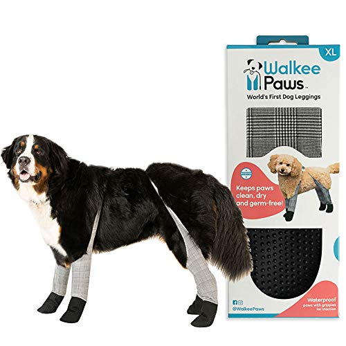 Walkee Paws Dog Leggings, The World's First Dog Leggings That are Dog Shoes, Dog Boots and Dog Socks All in One, As Seen on Shark Tank (Checkered, X-Large)