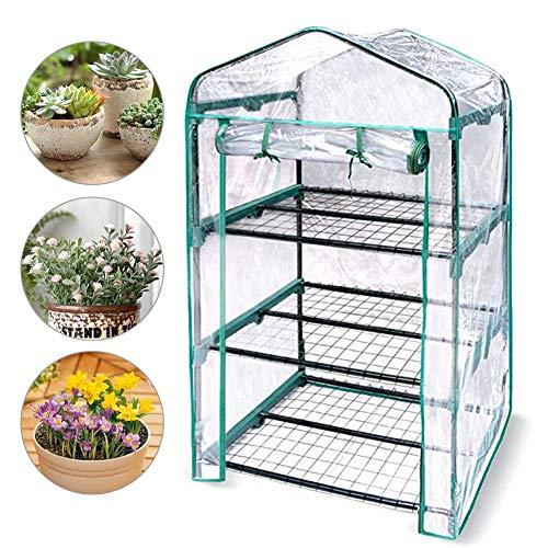 FANTESI Mini Greenhouse,Portable Garden Green House with Window,Flowers in Any Season-Gardening Rack Cover(M)
