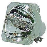 元製造元Philips UHP電球: UHP 132–100W 1.0p21.5( 3m ) 20kv )