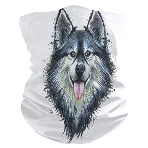 Multifunctionele sweatband, bandana voor motorrijders met halsband in de vorm van een hond, magische riemen voor het lopen in de bergen.
