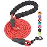 BAAPET 5 FT Strong Dog Leash with Comfortable Padded Handle and Highly Reflective Threads Dog Leashes for Small and Medium Dogs (Red)