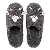 Zapatillas de estar por casa, Aldult Niños Dibujos Animados Slipper, Zapatos De Invierno Cálidas Casa De Invierno Bordado De Invierno Zapatillas De Abrigo Impermeable Y Anti(Size:Medio,Color:gris)
