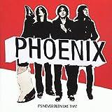 Songtexte von Phoenix - It's Never Been Like That