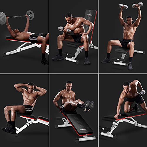 HASIMAN Adjustable Weight Bench, Foldable Workout Bench Incline Bench for Home Gym Full Body Workout Strength Training Bench Press