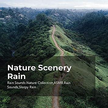 Nature Scenery Rain