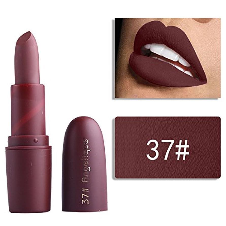 レースメールを書くハイキングMiss Rose Nude Lipstick 22 colors Waterproof Vampire Brown Beauty Baby Lips Batom Matte lipstick Makeup Tats Eugenie Margherita