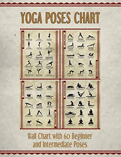 Yoga Poses Chart: Chart / Mini Poster With 60 Common Hatha Yoga Poses / Asanas in Sanskrit and English