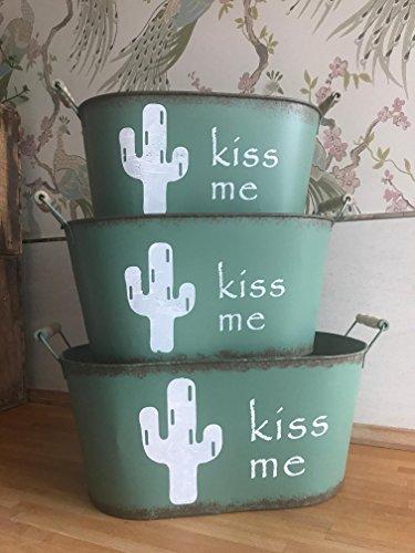 Baldes metlicos Cactus avec poignées de Bois (Pack de 3 Baldes)