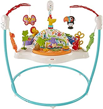 Fisher-Price Animal Activity Jumperoo Blue One Size