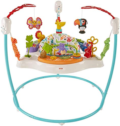 Fisher-Price Animal Activity Jumperoo, Blue, One Size